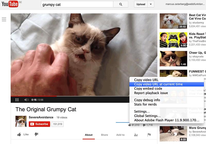 Bild 24: På exempelvis Youtube kan man länka till en valfri startpunkt i ett videoklipp.